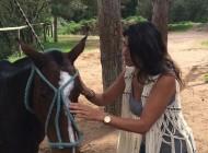 El reto de Tonete Ayesa: El hada que susurraba a los caballos.