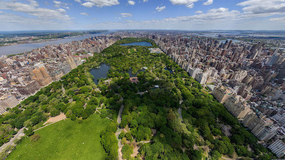 secrets-of-central-park-everything-you-never-knew-about-new-york-citys-lush-oasis
